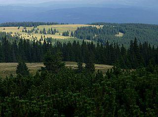 Călimani Mountains mountain