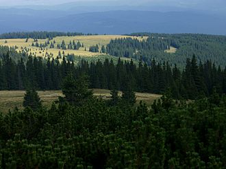 Protected areas of Romania - Image: Kelemen havasok