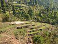 Khoriya Village 2.jpg