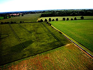 Cropmark - Kite aerial photo of crop marks at Nesley, near Tetbury, Gloucestershire. Cereal crop left, beans right.  The relative intensity in the crops was reversed in the near infra-red.