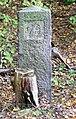Kostelec nad Černými lesy, kamenný mezník v lese - 79.jpg