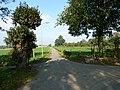 Kruising Schimmelliggerweg-Schey-Schilberg (3).JPG