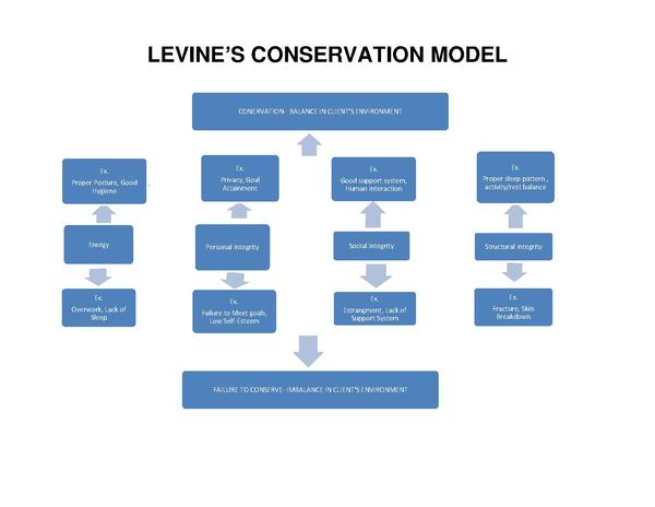 Wound Management: Using Levine's Conservation Model to Guide Practice