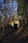 LSG H 00070 Calenberger Leinetal - Ruine Calenburg (1).jpg