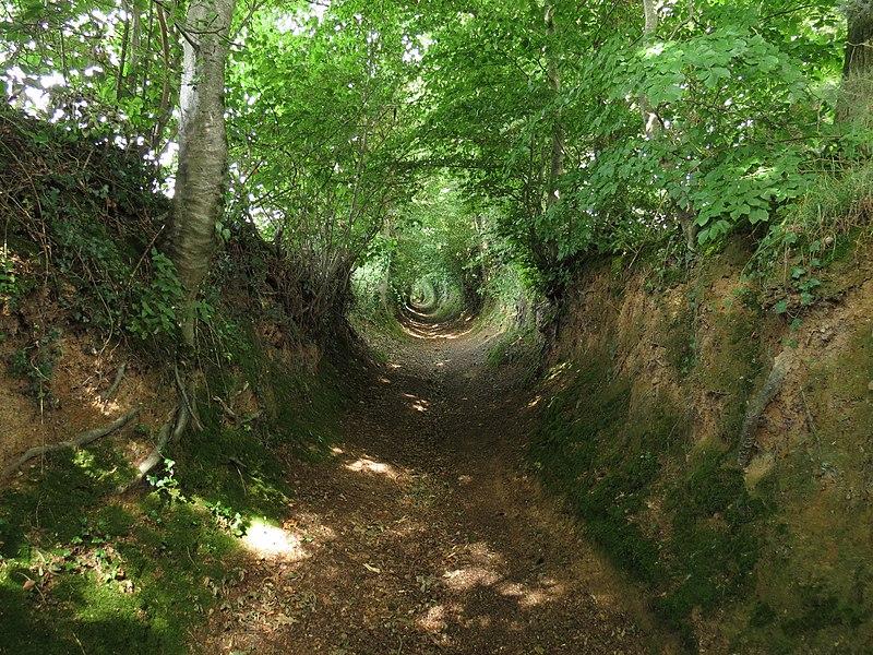 File:La Meauffe - Chemin creux 1.JPG