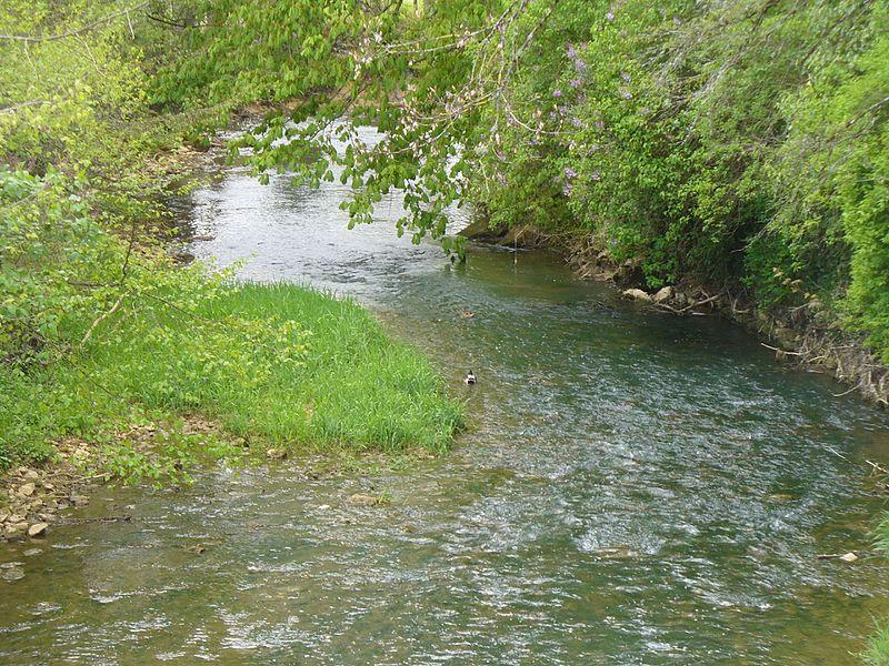 Photographie de La traire prise depuis le pont de Nogent dit le-Bas (Haute-Marne).