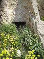 La natura attorno a una tomba.JPG