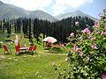 Lalazar Valley Kaghan.jpg