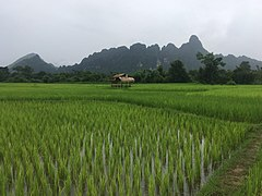 Landscape in Vang Vieng 16.jpg