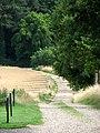 Lane to Rectory Road - geograph.org.uk - 1406543.jpg