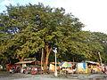 Laoac,Pangasinanjf8644 02.JPG