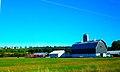 Large Blue Barn - panoramio.jpg