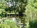 Le Don (rivière) aux environs de la Fleuriais (Treffieux).jpg