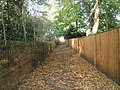 Leaves on the footpath from King Edward's School to Culmer - geograph.org.uk - 1545832.jpg