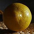 Lemon 38 365 (39423352184).jpg