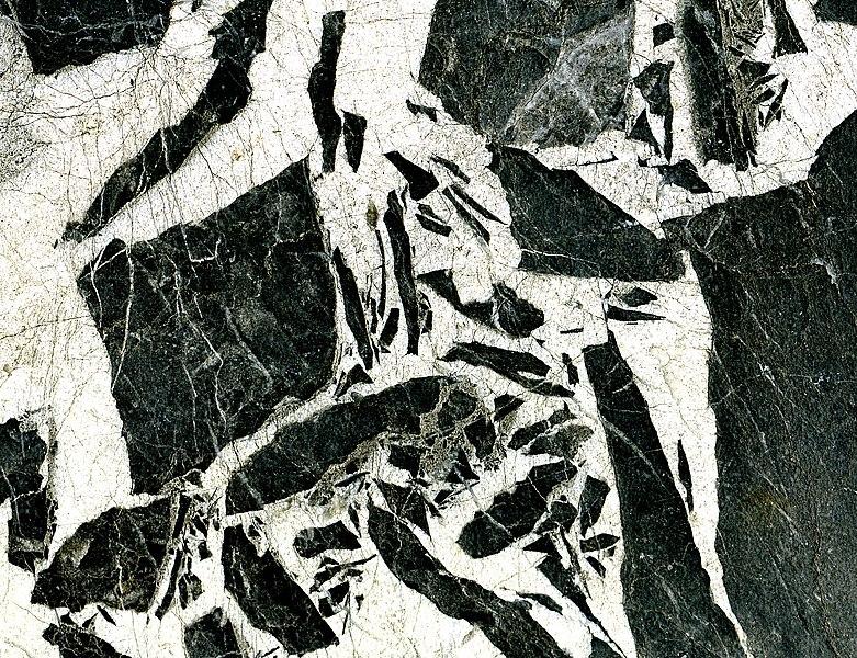 Fichier:Limestone breccia; quarry at Aubert France.jpg