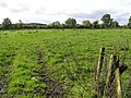 Lismontigley Townland - geograph.org.uk - 993720.jpg