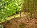 Llwybyr Dyffryn Gwy - Wye Valley Way - geograph.org.uk - 1375824.jpg