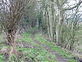 Looking SW along footpath to Ilenden Farm - geograph.org.uk - 328546.jpg