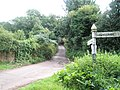 Looking down lane to West Luccombe - geograph.org.uk - 935227.jpg