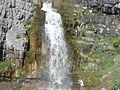 Lower tier of Stewart Cascades, Jul 08.jpg
