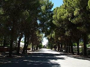 Loxton, Northern Cape - Loxton main road