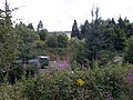 M74 Motorway - geograph.org.uk - 1407995.jpg