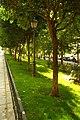 MADRID A.V.U. JARDIN-CINTA S. FRANCISCO EL GRANDE - panoramio (12).jpg