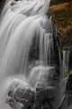 Macro-mill-creek-waterfall - West Virginia - ForestWander.jpg