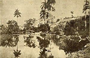 Manatial Bello, Matanza, 1880