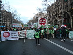 Mani Barcelona PAH 16-F 2013 (2).JPG