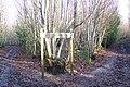 Marshleyharbour Wood - geograph.org.uk - 1610381.jpg