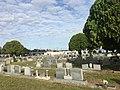 Marti-Colon Cemetery.jpg
