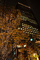Marunouchi light decorated trees -2 (8242121795).jpg