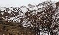 Mazandaran, Iran, Alborz Mountains, Azad Kuh (8999213849).jpg