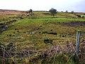 Meenablagh or Fourth Corgary - geograph.org.uk - 722761.jpg