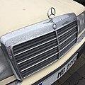 Mercedes-Stern 1992.JPG