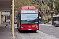 Metrobus liveried (2217 ST), operated by Sydney Buses, Custom Coaches 'CB60 Evo II' bodied Mercedes-Benz O500LE CNG on Loftus Street in Circular Quay.jpg