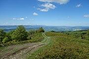 Minčol (vrch v Čergove) 18.jpg