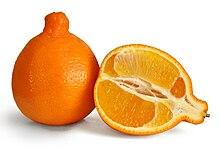 Tangelos - Bee Sweet Citrus