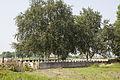Minty Farm Cemetery 1.JPG