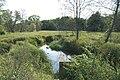 Mokradła - panoramio (1).jpg