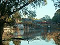 Morning On The Murray - panoramio.jpg