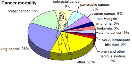 Most common cancers - female, by mortality