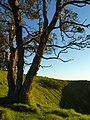Mount Eden, Auckland, New Zealand (3).JPG