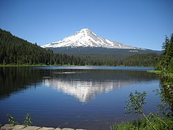 Mount Hood in Trillium Lake.jpg