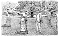 Mr. Punch's Book of Sports (Illustration Page 102).png