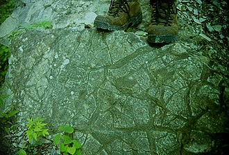 Roundtop Hill (Maryland) - Preserved mudcracks at Roundtop Hill