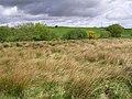 Mullanrody Townland - geograph.org.uk - 429457.jpg