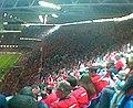 Munster win Heineken Cup.jpg